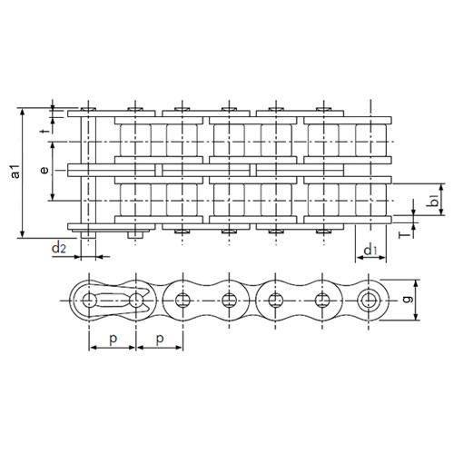 Diagram - Chain - Roller - Metal - Duplex - Stainless Steel