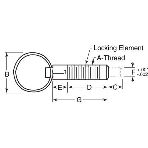 Diagram - Plungers - Spring - Ring Handle - Locking - Stainless-Phenolic
